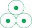 avatar_triKlops